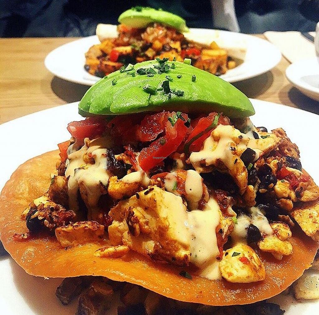 """Photo of Blu Jam Cafe  by <a href=""""/members/profile/mikuteranishi"""">mikuteranishi</a> <br/>rancheros vegan <br/> March 31, 2016  - <a href='/contact/abuse/image/71326/142181'>Report</a>"""