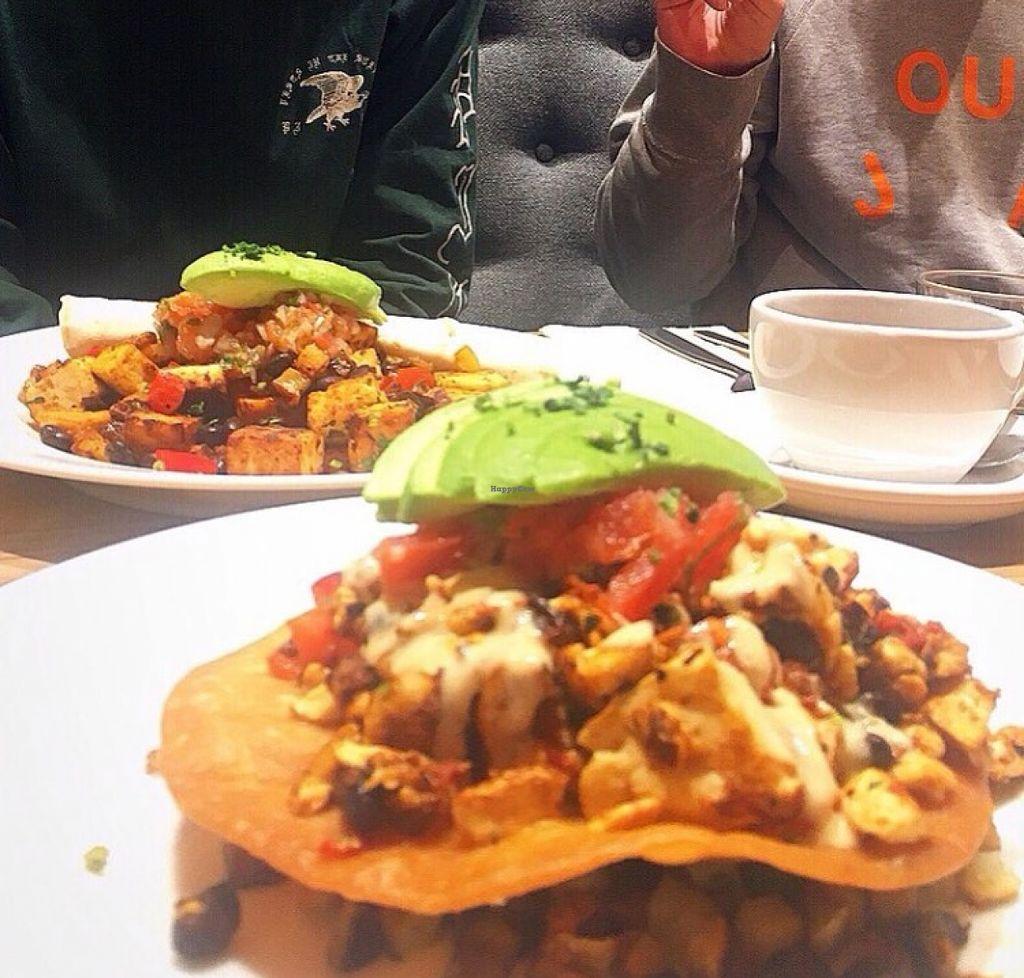 "Photo of Blu Jam Cafe  by <a href=""/members/profile/mikuteranishi"">mikuteranishi</a> <br/>Vegan Rancheros at Blu Jam Cafe Daikanyama <br/> March 31, 2016  - <a href='/contact/abuse/image/71326/142182'>Report</a>"