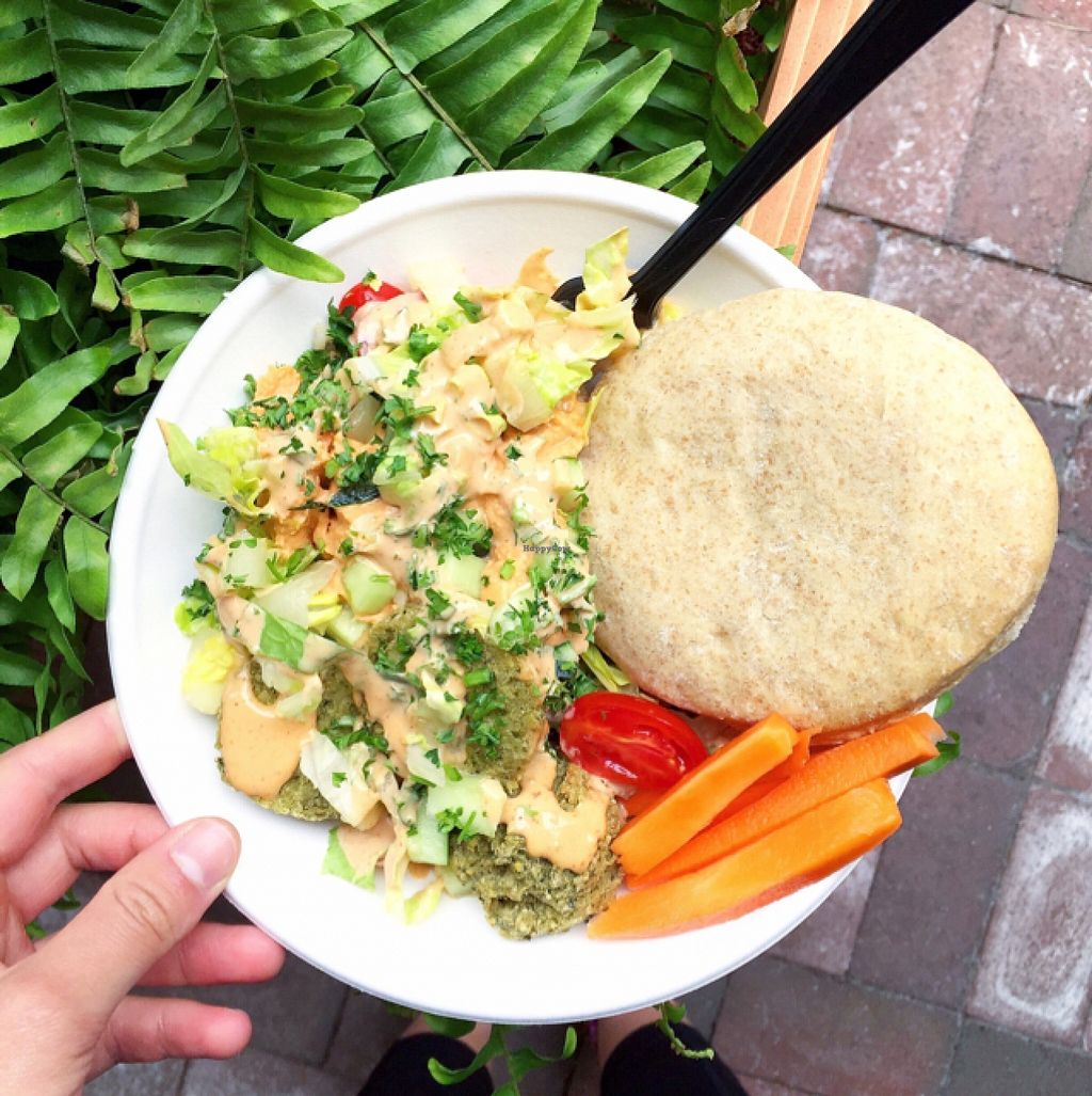 """Photo of Tahaza Hummus Kitchen  by <a href=""""/members/profile/MelHeinrich"""">MelHeinrich</a> <br/>delicious rice bowl  <br/> May 22, 2016  - <a href='/contact/abuse/image/71422/150335'>Report</a>"""
