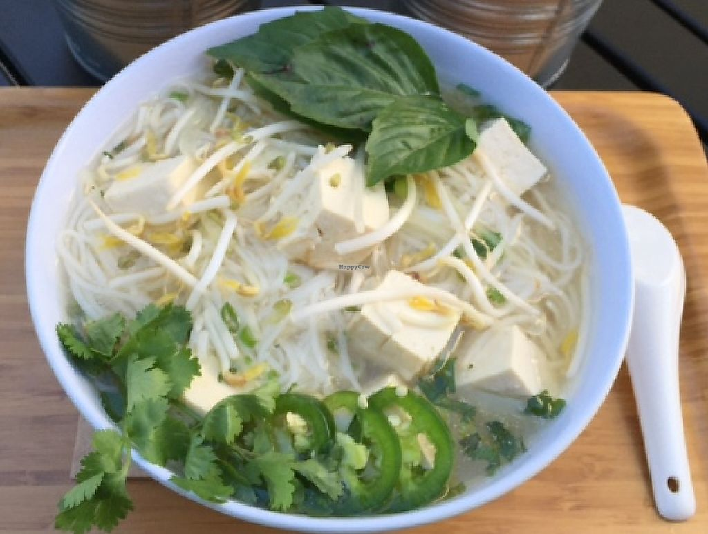 """Photo of 6-1-Pho  by <a href=""""/members/profile/61pho"""">61pho</a> <br/>6-1-Pho has some pho-nomenal vegetarian and vegan options! <br/> March 27, 2016  - <a href='/contact/abuse/image/71444/216845'>Report</a>"""