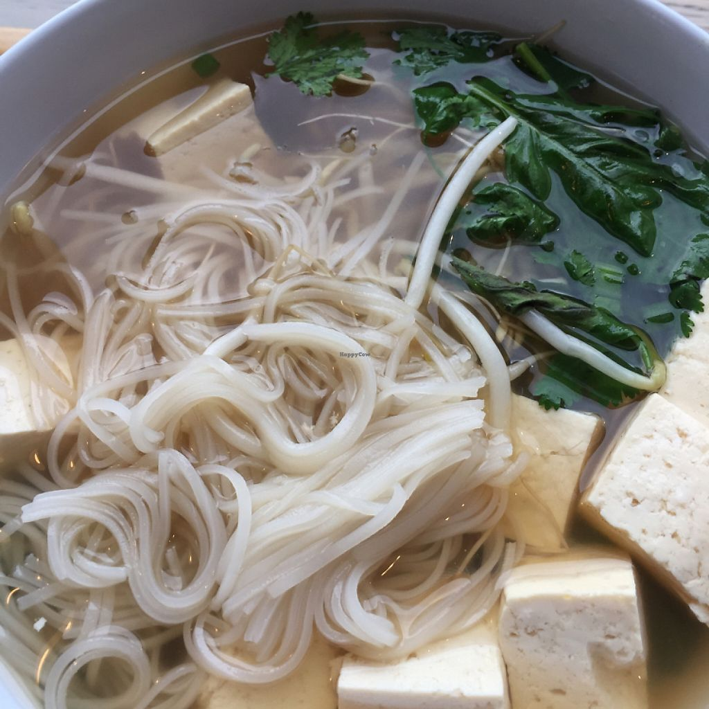 """Photo of 6-1-Pho  by <a href=""""/members/profile/musclerussell4434"""">musclerussell4434</a> <br/>vegan pho bowl <br/> May 9, 2017  - <a href='/contact/abuse/image/71444/257429'>Report</a>"""