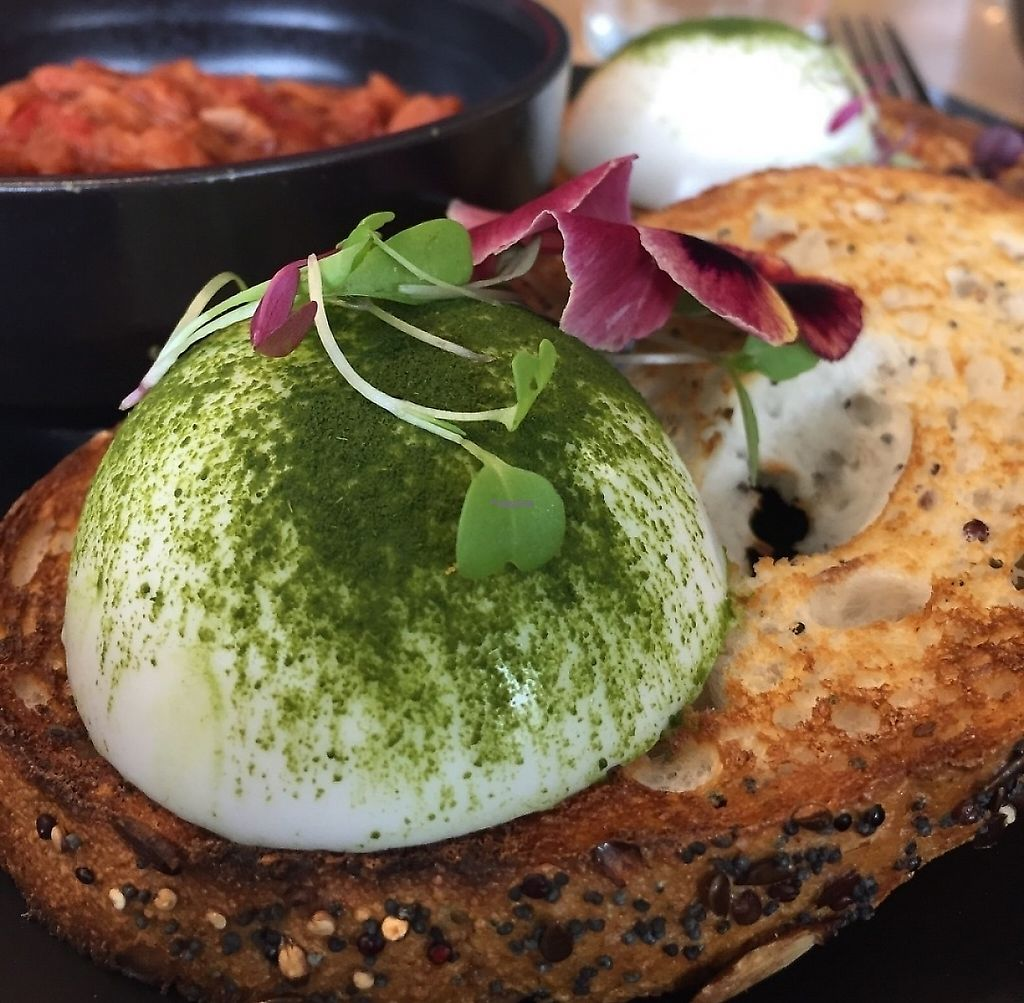"""Photo of Matcha Mylkbar  by <a href=""""/members/profile/karlaess"""">karlaess</a> <br/>Vegan eggs (mock) with a side of bbq pulled jackfruit <br/> November 27, 2016  - <a href='/contact/abuse/image/71552/261950'>Report</a>"""