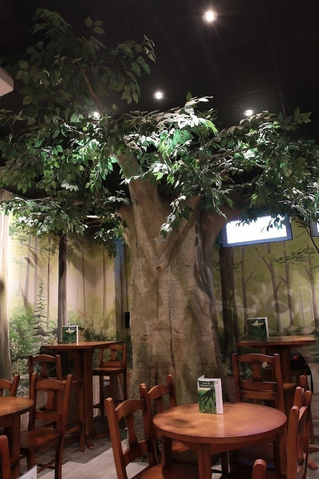 """Photo of CLOSED: Teteria El Bosque  by <a href=""""/members/profile/JorgeEscartin"""">JorgeEscartin</a> <br/>Our very own tree <br/> November 9, 2016  - <a href='/contact/abuse/image/71554/187632'>Report</a>"""