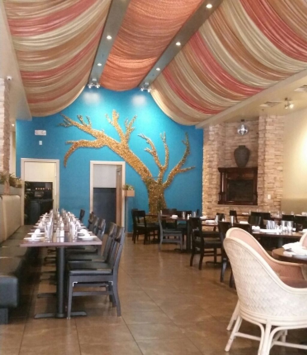 """Photo of Spice Xing  by <a href=""""/members/profile/lazylimabean"""">lazylimabean</a> <br/>Dining area <br/> April 9, 2016  - <a href='/contact/abuse/image/71636/202059'>Report</a>"""