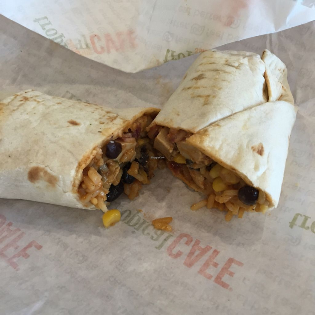 Photo of Tropical Smoothie Cafe  by Overunderit <br/>Jamaican jerk wrap <br/> March 31, 2016  - <a href='/contact/abuse/image/71648/142107'>Report</a>