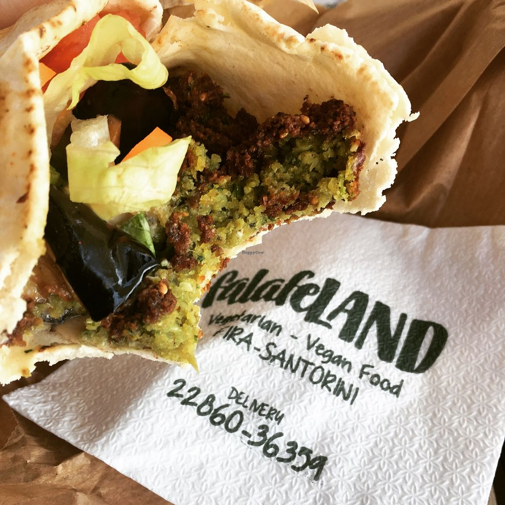"""Photo of FalafeLAND  by <a href=""""/members/profile/cloudnineberry"""">cloudnineberry</a> <br/>Falafel from Falafeland <br/> May 19, 2016  - <a href='/contact/abuse/image/71724/149791'>Report</a>"""