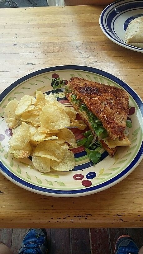 """Photo of Gourmet Gallery  by <a href=""""/members/profile/RomanKowal"""">RomanKowal</a> <br/>Spicy Korean Grilled Tofu Sandwich <br/> August 1, 2017  - <a href='/contact/abuse/image/71726/287757'>Report</a>"""