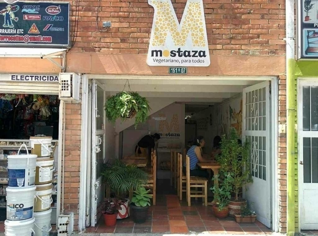 """Photo of Mostaza  by <a href=""""/members/profile/binox"""">binox</a> <br/>extérior <br/> December 31, 2016  - <a href='/contact/abuse/image/71822/206601'>Report</a>"""