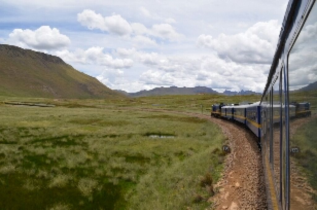 """Photo of Peru Rail  by <a href=""""/members/profile/VinceVandemolegraaf"""">VinceVandemolegraaf</a> <br/>Peru rail <br/> July 9, 2016  - <a href='/contact/abuse/image/71826/158587'>Report</a>"""