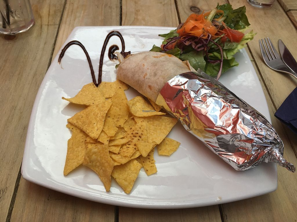 """Photo of Voltaire  by <a href=""""/members/profile/MariRoberts"""">MariRoberts</a> <br/>Seitan wrap <br/> July 26, 2017  - <a href='/contact/abuse/image/71832/285100'>Report</a>"""