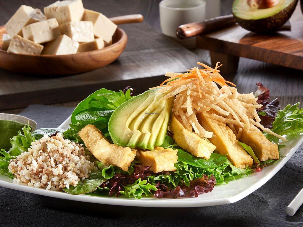 "Photo of Burrito San  by <a href=""/members/profile/caridadfernandez"">caridadfernandez</a> <br/>Saucy Tofu Salad: Ginger braised tofu, avocado, crispy wonton crisps, shredded carrots, organic field greens and black bean sauce <br/> April 13, 2016  - <a href='/contact/abuse/image/71901/144448'>Report</a>"