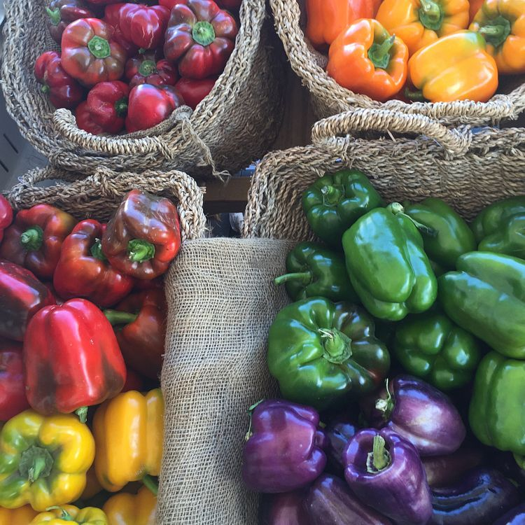"Photo of Fruit World  by <a href=""/members/profile/hilary.williams"">hilary.williams</a> <br/>peppers galore <br/> August 25, 2016  - <a href='/contact/abuse/image/71928/171436'>Report</a>"