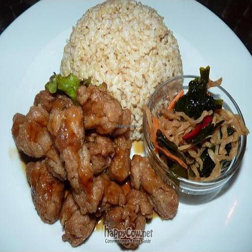 """Photo of CLOSED: Vegan Healing Cafe  by <a href=""""/members/profile/Nihacc"""">Nihacc</a> <br/>Fried soy meat with brown rice <br/> September 5, 2010  - <a href='/contact/abuse/image/7192/5697'>Report</a>"""