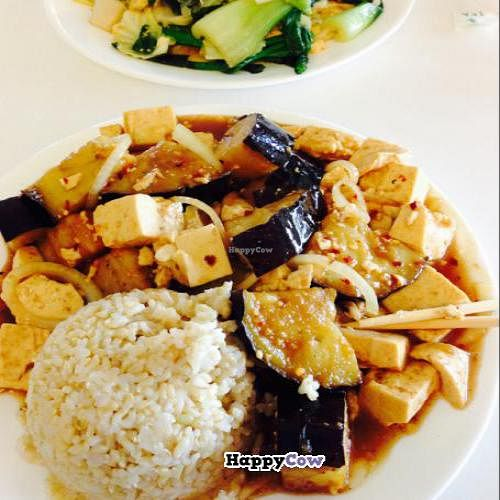 """Photo of Loving Hut - Fresno  by <a href=""""/members/profile/vivahate68"""">vivahate68</a> <br/>the Zen with eggplant and tofu <br/> December 7, 2013  - <a href='/contact/abuse/image/7201/60040'>Report</a>"""