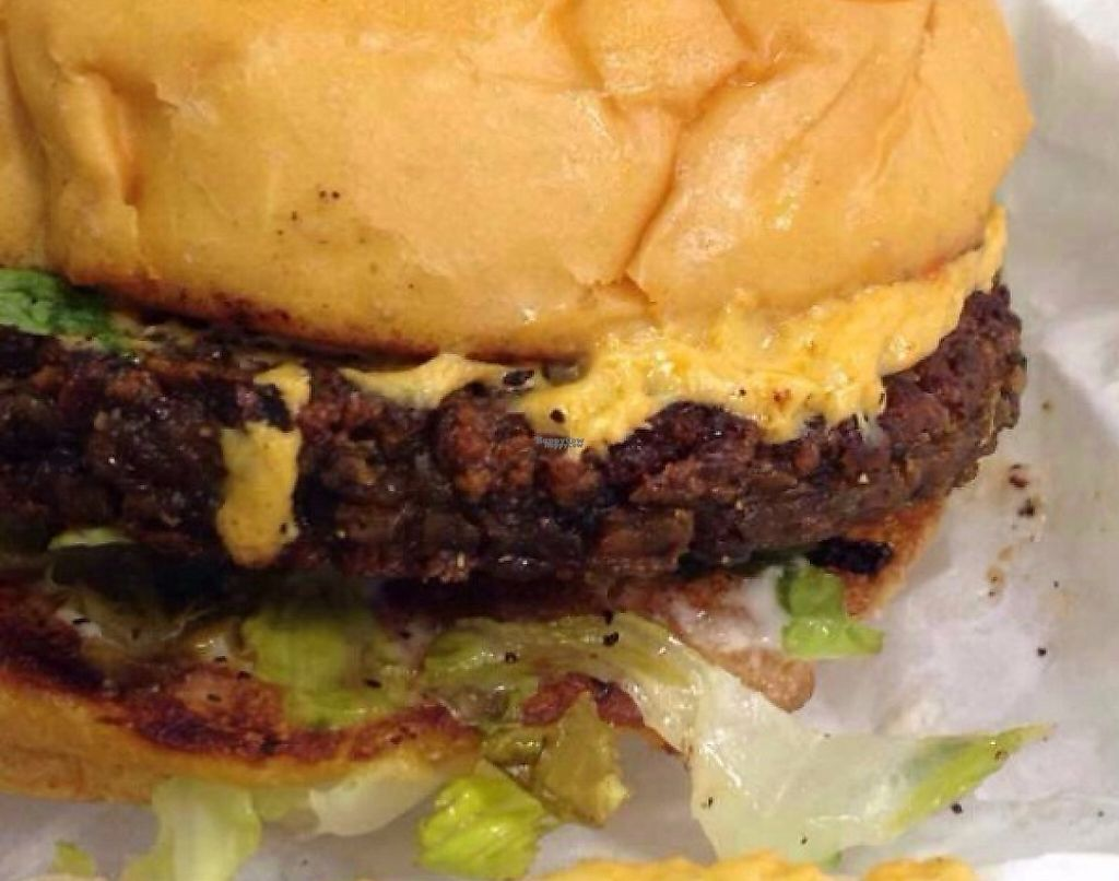 """Photo of Arlo's Food Truck - Spider House Cafe  by <a href=""""/members/profile/Zebamarie"""">Zebamarie</a> <br/>Bac'n Cheeze Burger -So decadent and delicious! Best burger I've ever had! <br/> December 21, 2016  - <a href='/contact/abuse/image/72115/225927'>Report</a>"""