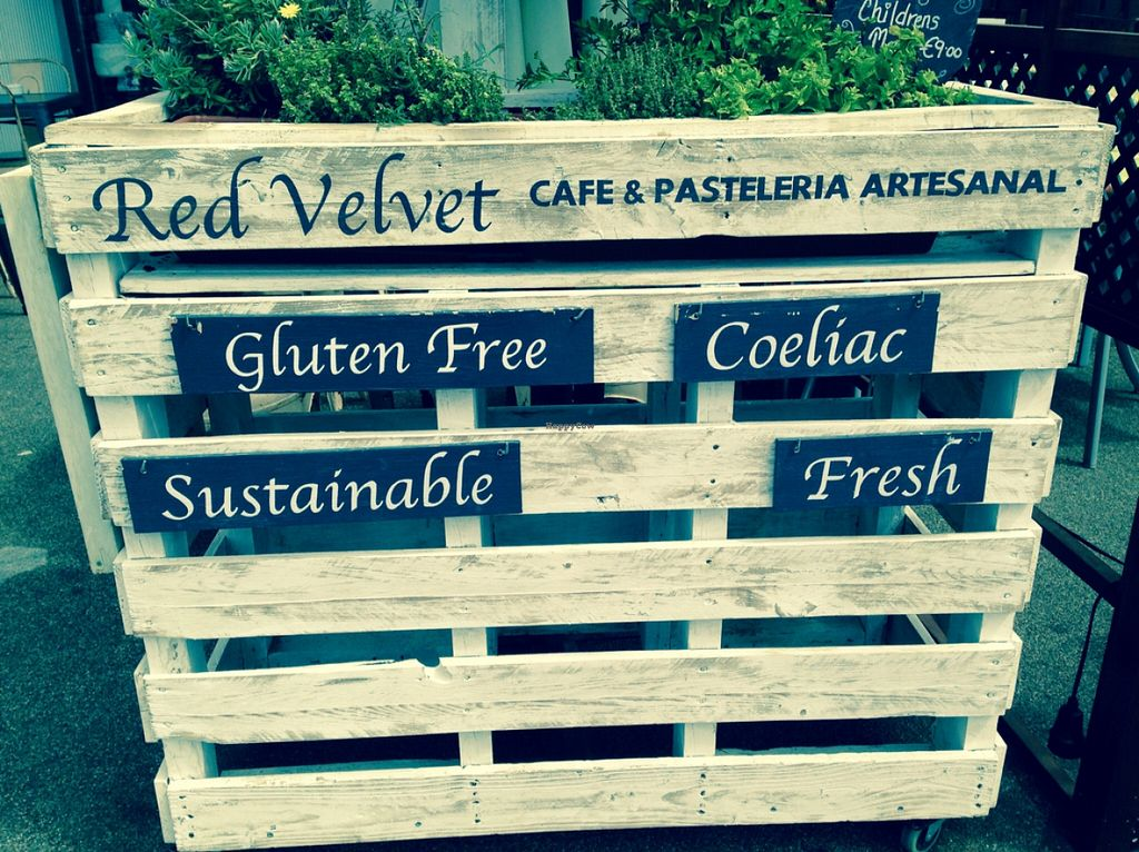 """Photo of Red Velvet Bakery  by <a href=""""/members/profile/S.H."""">S.H.</a> <br/>The other side of this planter has the word 'Vegan' on it <br/> April 11, 2016  - <a href='/contact/abuse/image/72144/144088'>Report</a>"""