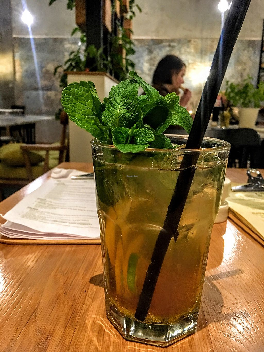"Photo of Zielona  by <a href=""/members/profile/Elinavegan"">Elinavegan</a> <br/>Mint lemonade <br/> February 9, 2018  - <a href='/contact/abuse/image/72166/356890'>Report</a>"