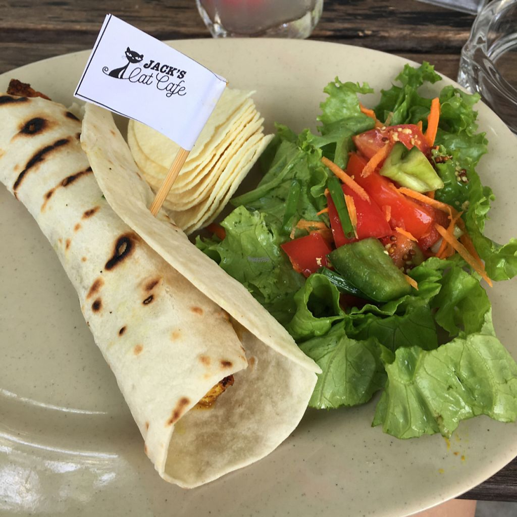 "Photo of Jack's Cat Cafe  by <a href=""/members/profile/IsabellaEvans"">IsabellaEvans</a> <br/>coconut curried tofu wrap!  <br/> April 4, 2017  - <a href='/contact/abuse/image/72185/244543'>Report</a>"