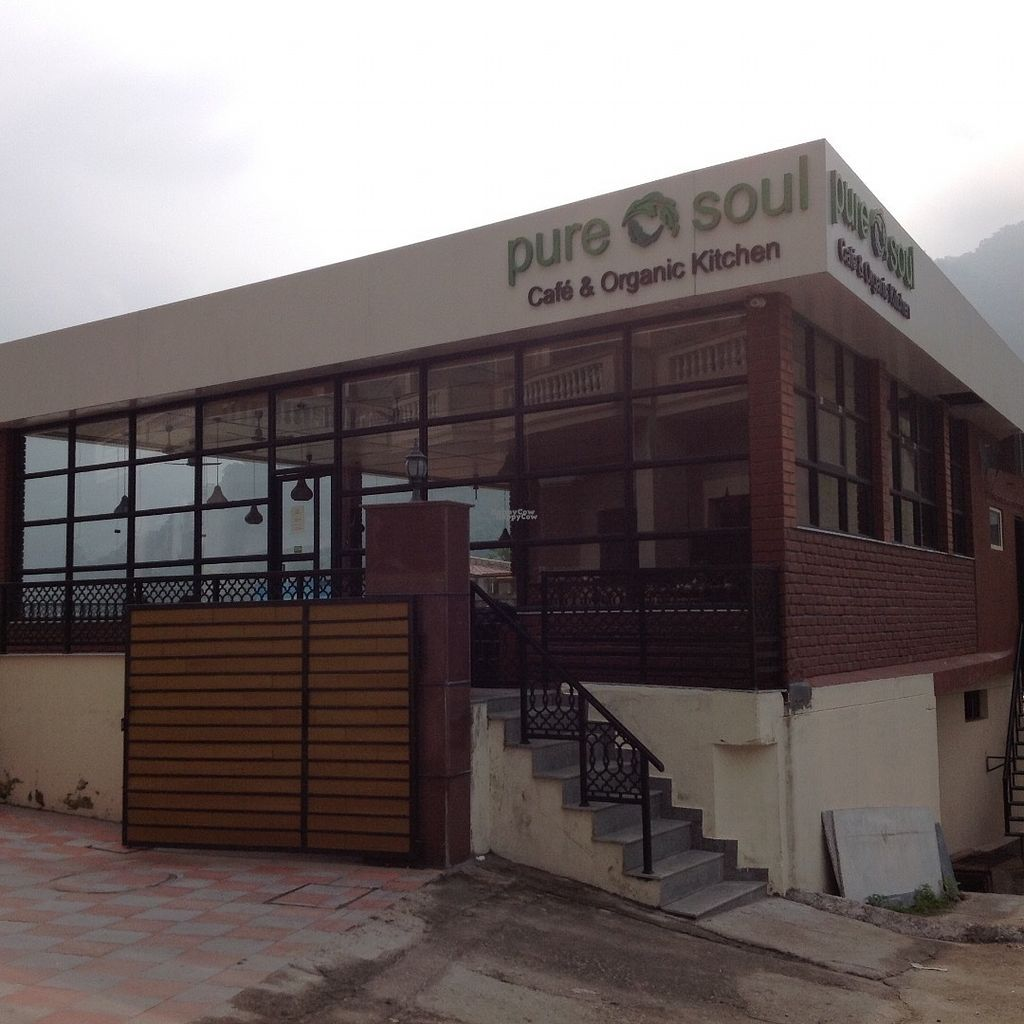 "Photo of Pure Soul Cafe  by <a href=""/members/profile/Maia%20Rose"">Maia Rose</a> <br/>Pure Soul cafe Rishikesh India <br/> September 10, 2016  - <a href='/contact/abuse/image/72197/174772'>Report</a>"