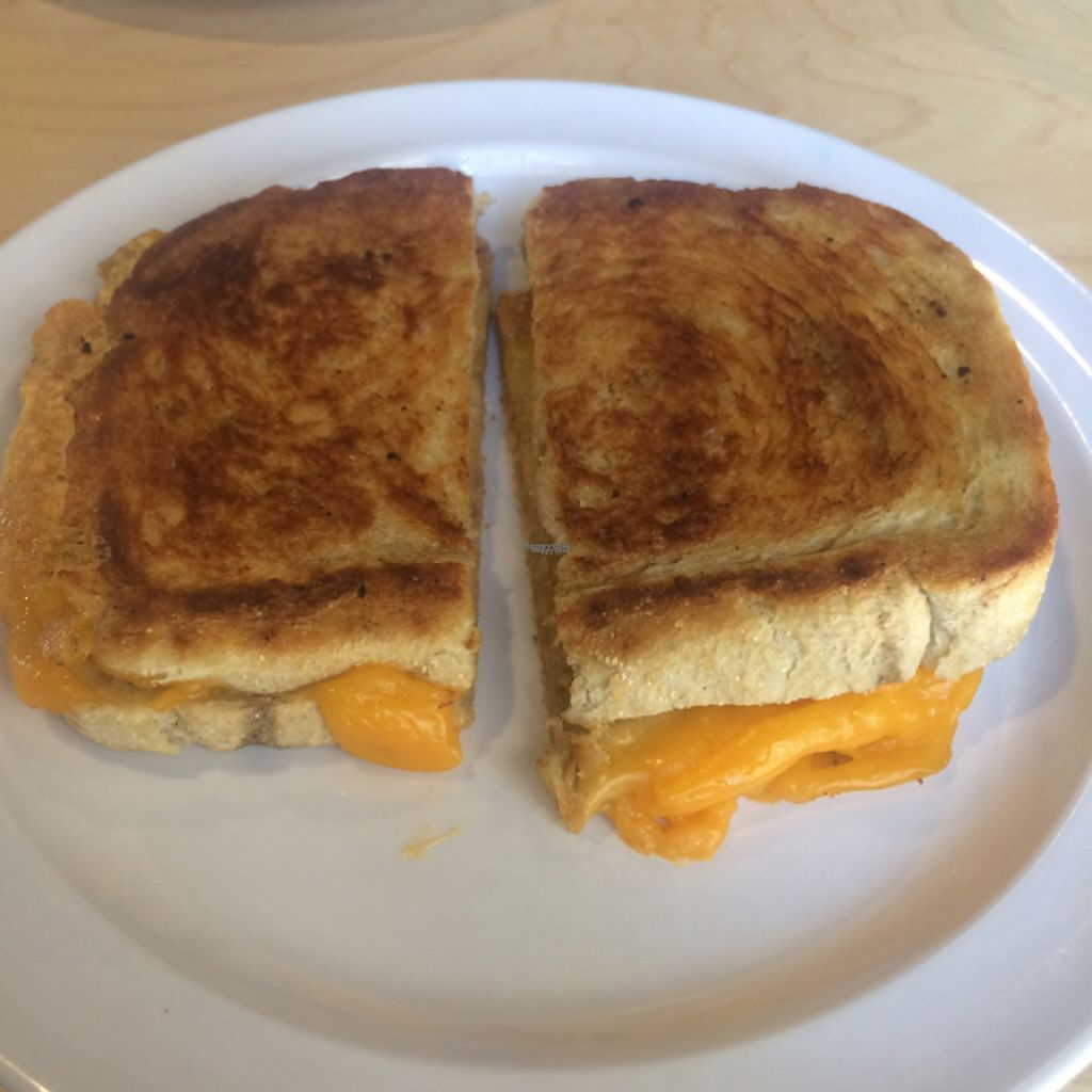 """Photo of Jolly Beans Cafe  by <a href=""""/members/profile/glassesgirl79"""">glassesgirl79</a> <br/>Happy cow vegan grilled cheeze <br/> August 8, 2016  - <a href='/contact/abuse/image/72214/166976'>Report</a>"""