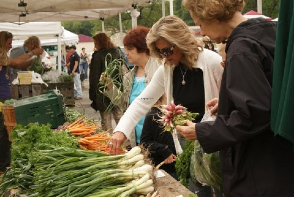 """Photo of Ramsey Farmers Market  by <a href=""""/members/profile/Ellenkm"""">Ellenkm</a> <br/>Organic Blooming Hill Farm is there every week with fresh veggies and fruit <br/> April 12, 2016  - <a href='/contact/abuse/image/72254/144277'>Report</a>"""