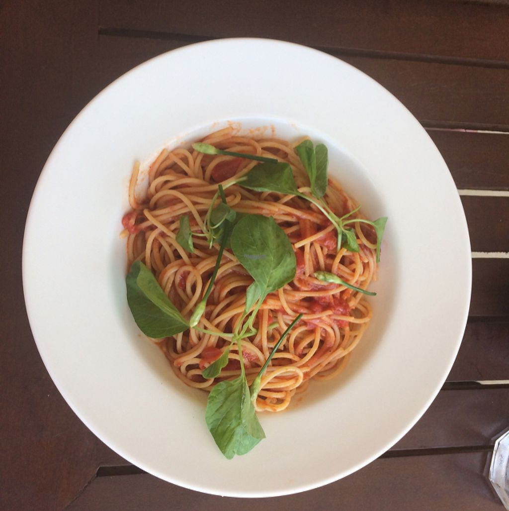 """Photo of Simple Things  by <a href=""""/members/profile/Mitjacinda"""">Mitjacinda</a> <br/>Pasta with homemade tomato sauce and basil <br/> April 22, 2017  - <a href='/contact/abuse/image/72312/250793'>Report</a>"""