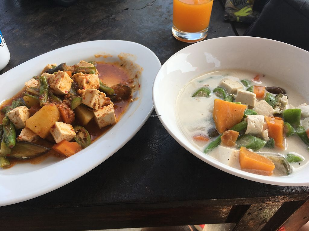 """Photo of Levine's  by <a href=""""/members/profile/Shanthi"""">Shanthi</a> <br/>The so so curry with tofu <br/> December 17, 2017  - <a href='/contact/abuse/image/72386/336384'>Report</a>"""