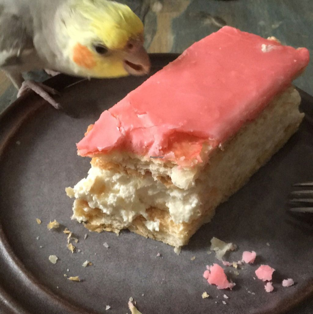 """Photo of CLOSED: Club Koffie  by <a href=""""/members/profile/Birdwonders"""">Birdwonders</a> <br/>vegan pastry bought at Clubkoffie <br/> May 20, 2017  - <a href='/contact/abuse/image/72401/260554'>Report</a>"""