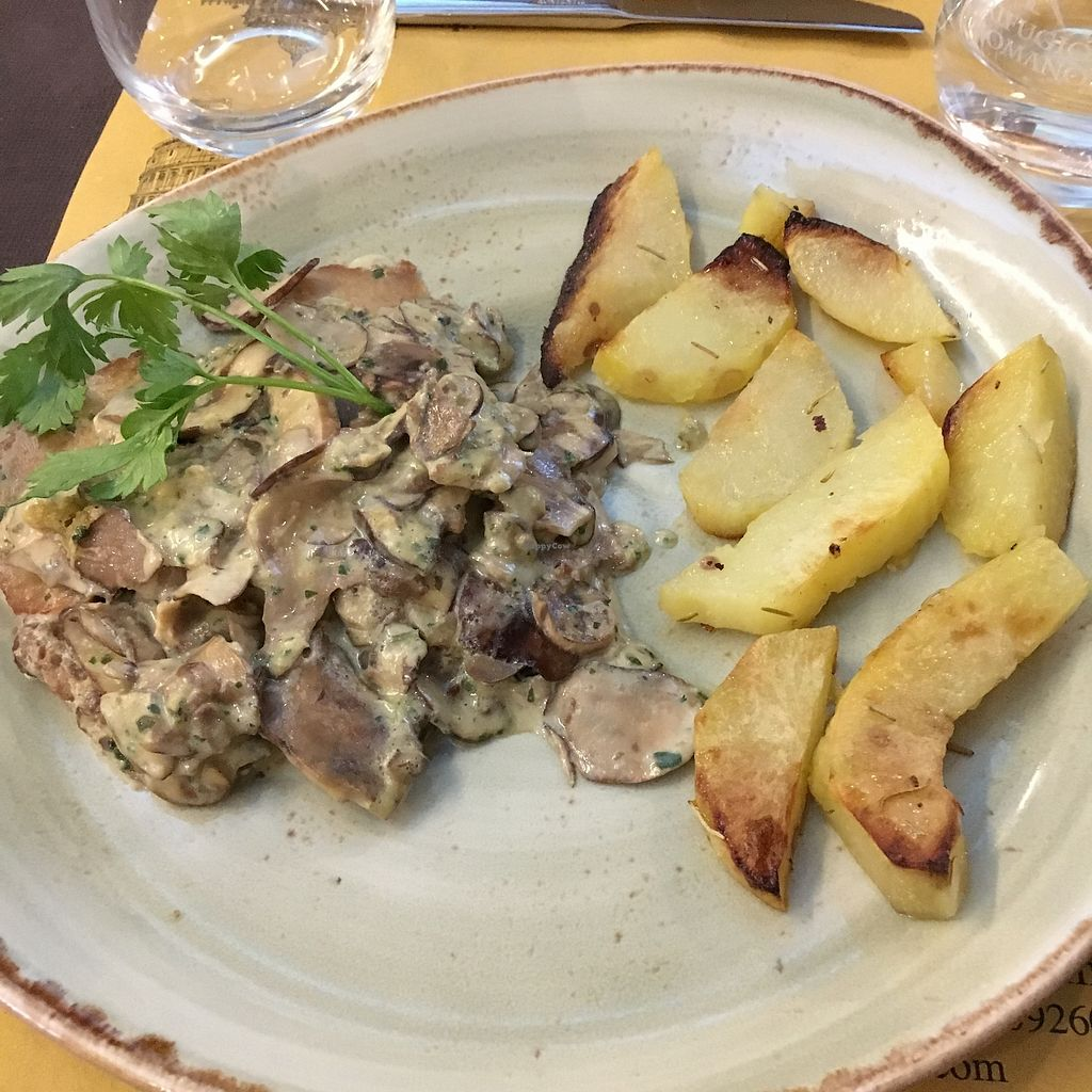"Photo of Rifugio Romano  by <a href=""/members/profile/Lottie309"">Lottie309</a> <br/>Seitan escalopes with mushroom sauce and potato wedges <br/> February 12, 2018  - <a href='/contact/abuse/image/72423/358420'>Report</a>"