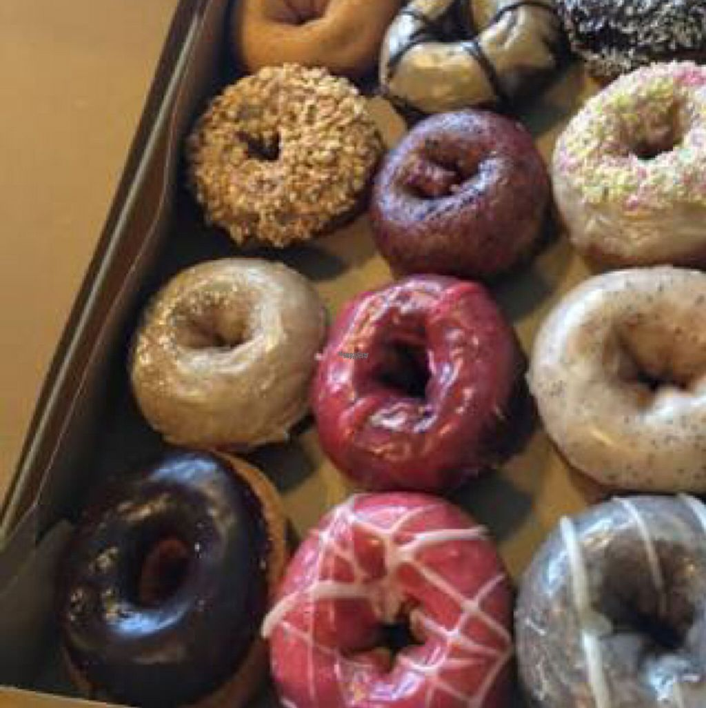 "Photo of Mighty-O Donuts - Capitol Hill  by <a href=""/members/profile/Pedropod"">Pedropod</a> <br/>vegan donuts  <br/> November 24, 2016  - <a href='/contact/abuse/image/72428/193863'>Report</a>"