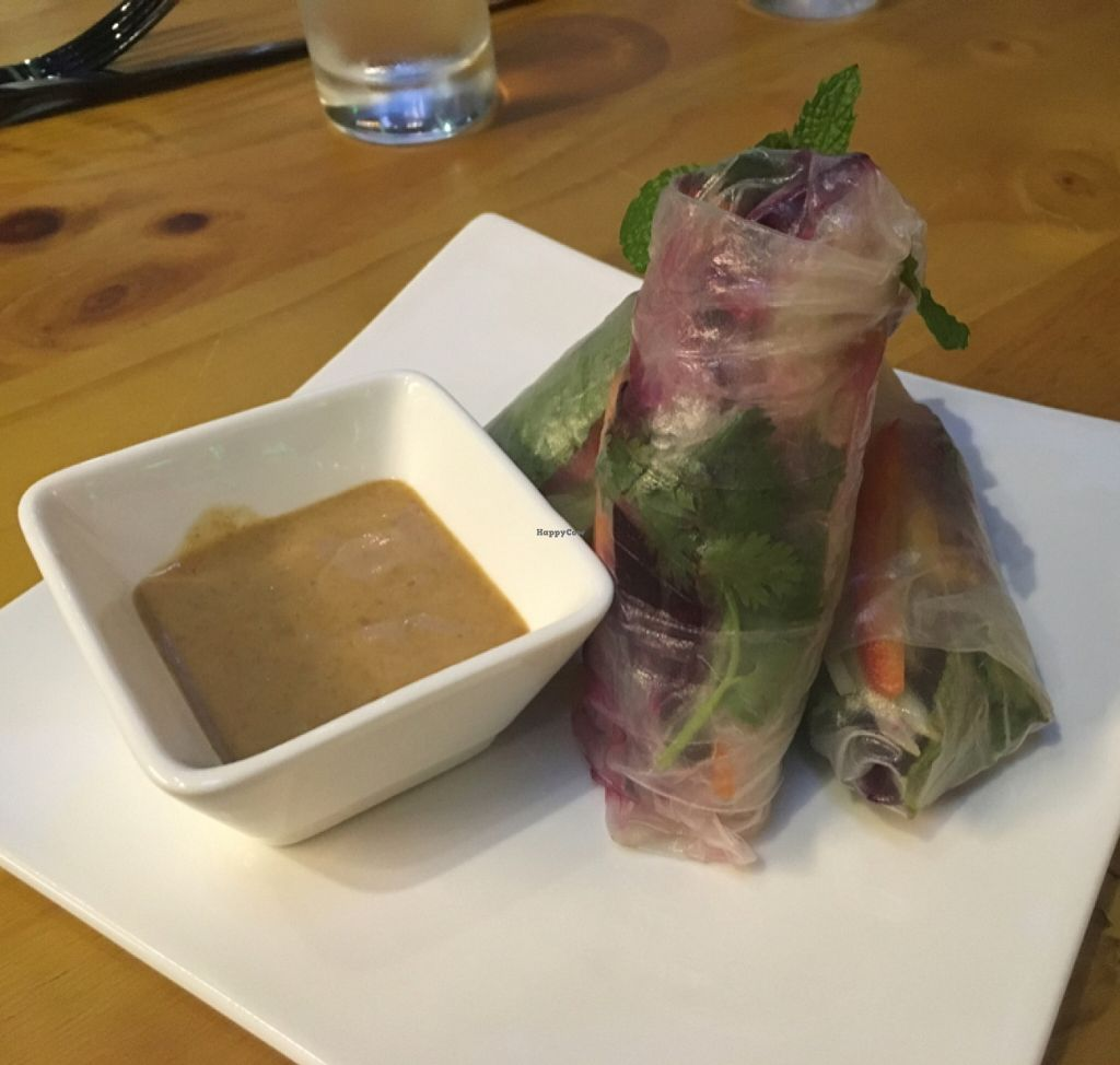 "Photo of CLOSED: Green Room  by <a href=""/members/profile/Emsee"">Emsee</a> <br/>Rainbow rolls with peanut sauce <br/> May 14, 2016  - <a href='/contact/abuse/image/72464/148885'>Report</a>"
