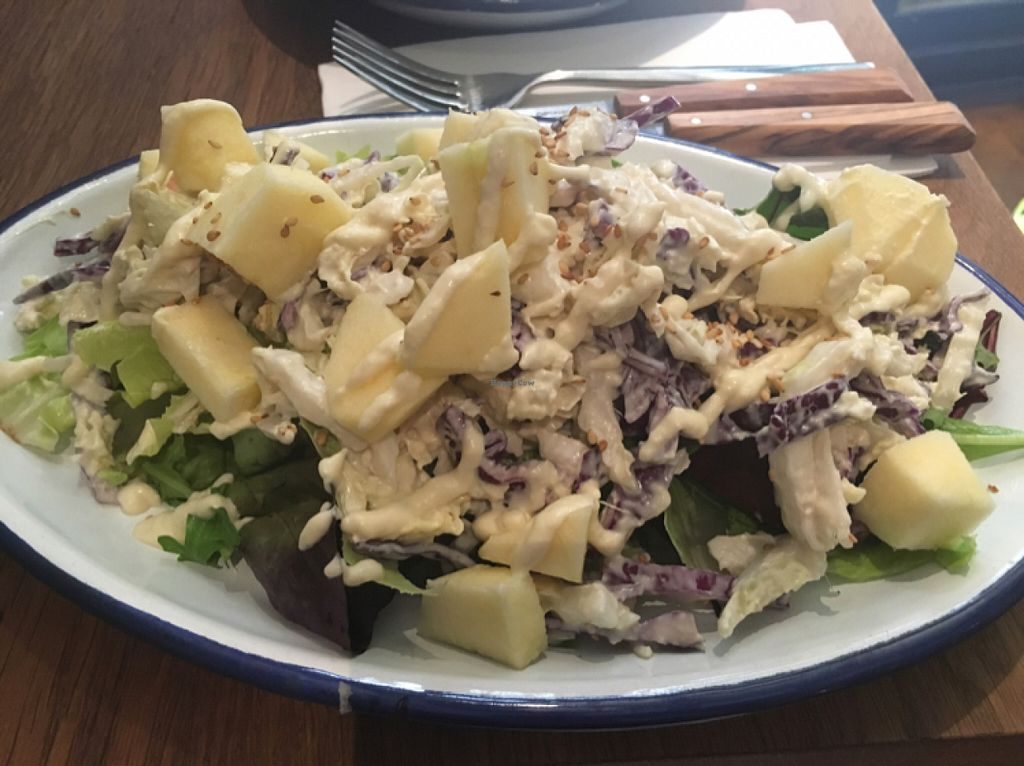"Photo of Teresa's Juicery  by <a href=""/members/profile/Irynazh"">Irynazh</a> <br/>Miso ginger coleslaw with fresh greens and apples  <br/> June 7, 2016  - <a href='/contact/abuse/image/72570/152741'>Report</a>"
