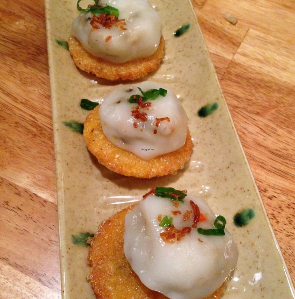 """Photo of Hoa Nguyen  by <a href=""""/members/profile/Labylala"""">Labylala</a> <br/>dumpling on rice Patty <br/> April 17, 2016  - <a href='/contact/abuse/image/72591/145011'>Report</a>"""