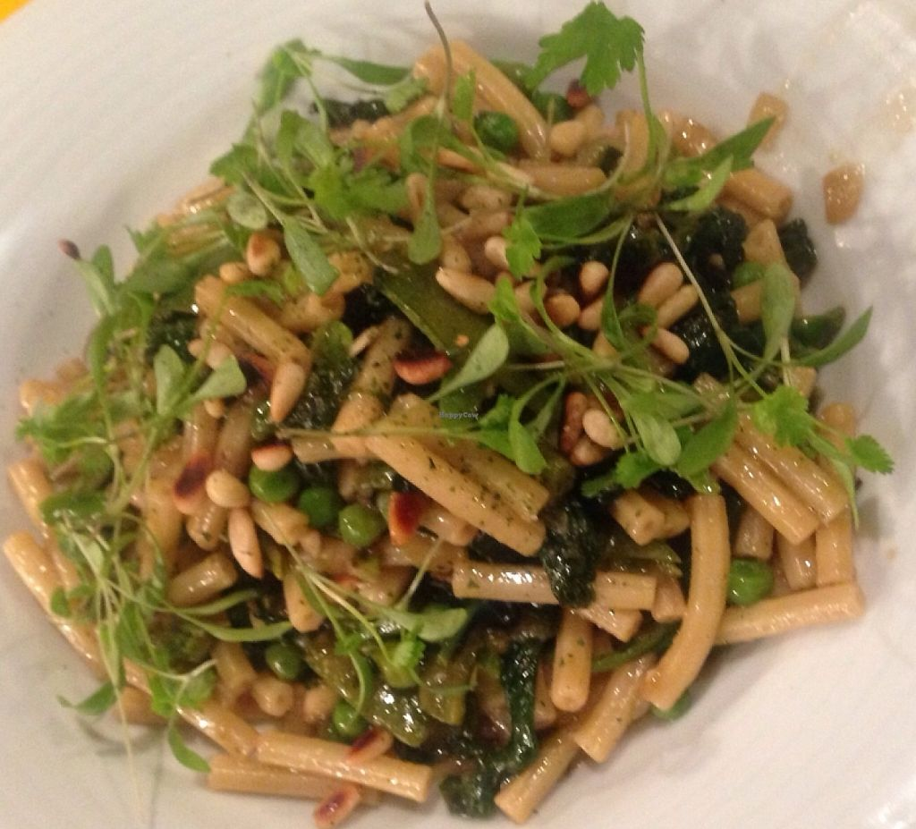 """Photo of CHICCAS  by <a href=""""/members/profile/CHICCAS%20Restaurante"""">CHICCAS Restaurante</a> <br/>Pasta with artichoke courgette pinenuts and micro herbs  <br/> April 19, 2016  - <a href='/contact/abuse/image/72652/241008'>Report</a>"""