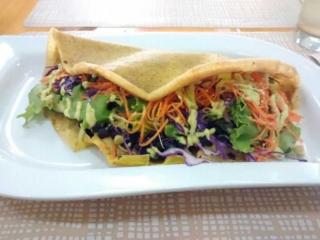 "Photo of SANA Vegan Cafe  by <a href=""/members/profile/kielsaenz"">kielsaenz</a> <br/>Taco integral relleno de frijoles negros y vegetales <br/> May 11, 2016  - <a href='/contact/abuse/image/72735/148509'>Report</a>"