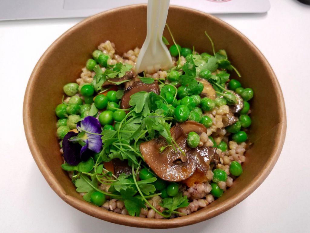 "Photo of CLOSED: SaladPride  by <a href=""/members/profile/KarimKanfoudi"">KarimKanfoudi</a> <br/>Buckwheat Salad <br/> June 9, 2016  - <a href='/contact/abuse/image/72743/153094'>Report</a>"