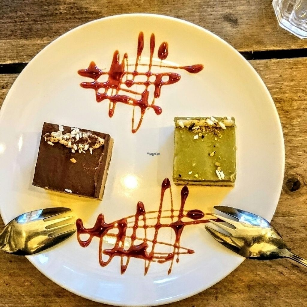 """Photo of CLOSED: SaladPride  by <a href=""""/members/profile/robz"""">robz</a> <br/>vegan raw cheesecakes  <br/> November 28, 2016  - <a href='/contact/abuse/image/72743/195421'>Report</a>"""