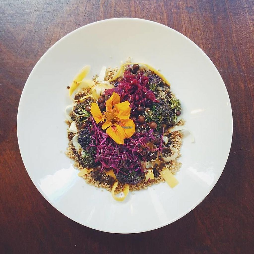 """Photo of CLOSED: SaladPride  by <a href=""""/members/profile/DonSteve"""">DonSteve</a> <br/>red cabbage and seaweeds, paprika, fennel & dill and mustard & turmeric <br/> November 30, 2016  - <a href='/contact/abuse/image/72743/195968'>Report</a>"""
