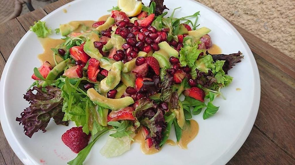 "Photo of Glodny Wilk  by <a href=""/members/profile/community"">community</a> <br/>Avocado and Pomegranate Salad <br/> March 7, 2017  - <a href='/contact/abuse/image/72798/233670'>Report</a>"