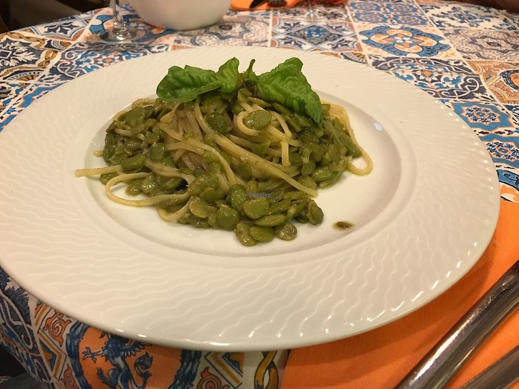 """Photo of Tony's Food & Drinks  by <a href=""""/members/profile/Orly"""">Orly</a> <br/>Pasta with fava beans. Very tasty ?   <br/> April 7, 2017  - <a href='/contact/abuse/image/72829/245533'>Report</a>"""