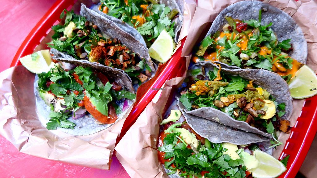 "Photo of BlueTaco  by <a href=""/members/profile/KatjaValentinaKramp"">KatjaValentinaKramp</a> <br/>3 different vegan tacos  <br/> January 29, 2018  - <a href='/contact/abuse/image/72846/352457'>Report</a>"