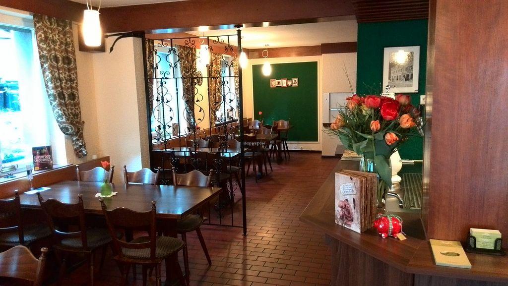 "Photo of CLOSED: Moringa Raw and Vegan Restaurant  by <a href=""/members/profile/moringarestaurant"">moringarestaurant</a> <br/> April 30, 2016  - <a href='/contact/abuse/image/72952/146787'>Report</a>"
