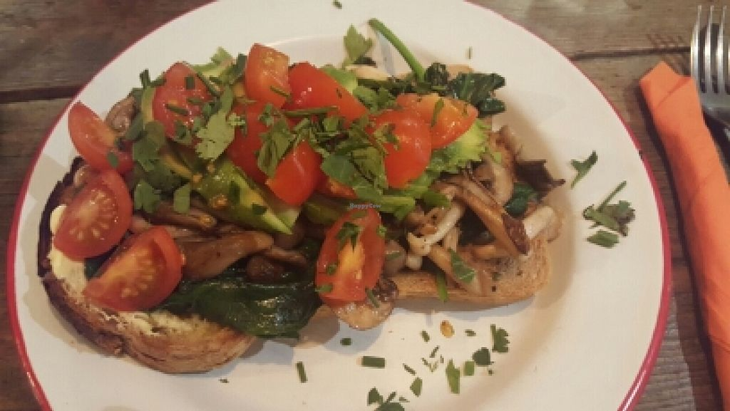 """Photo of CLOSED: The Caffeine Drip  by <a href=""""/members/profile/catsandbolts"""">catsandbolts</a> <br/>Wild mushrooms vegan-style <br/> May 15, 2016  - <a href='/contact/abuse/image/72974/149044'>Report</a>"""