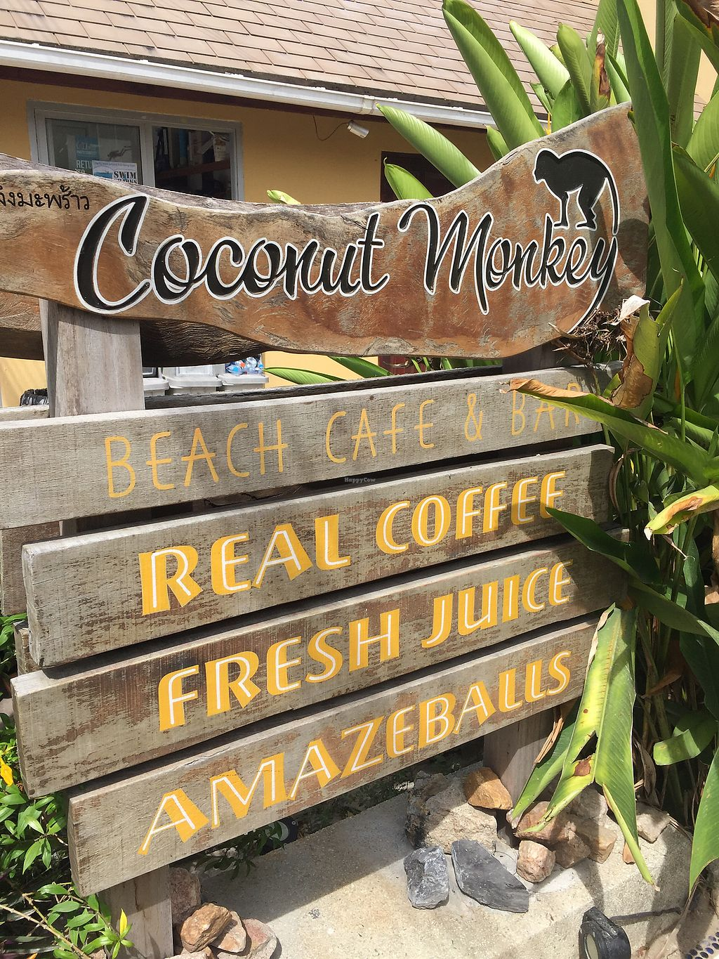 """Photo of Coconut Monkey  by <a href=""""/members/profile/SofieRed"""">SofieRed</a> <br/>entrance <br/> August 26, 2017  - <a href='/contact/abuse/image/73003/297296'>Report</a>"""