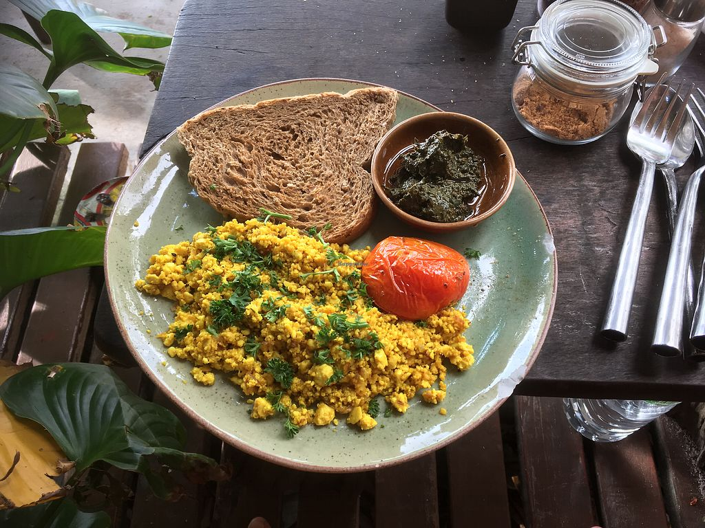 """Photo of Coconut Monkey  by <a href=""""/members/profile/IlonaGoossens"""">IlonaGoossens</a> <br/>Vegan scrambled eggs  <br/> February 25, 2018  - <a href='/contact/abuse/image/73003/363482'>Report</a>"""