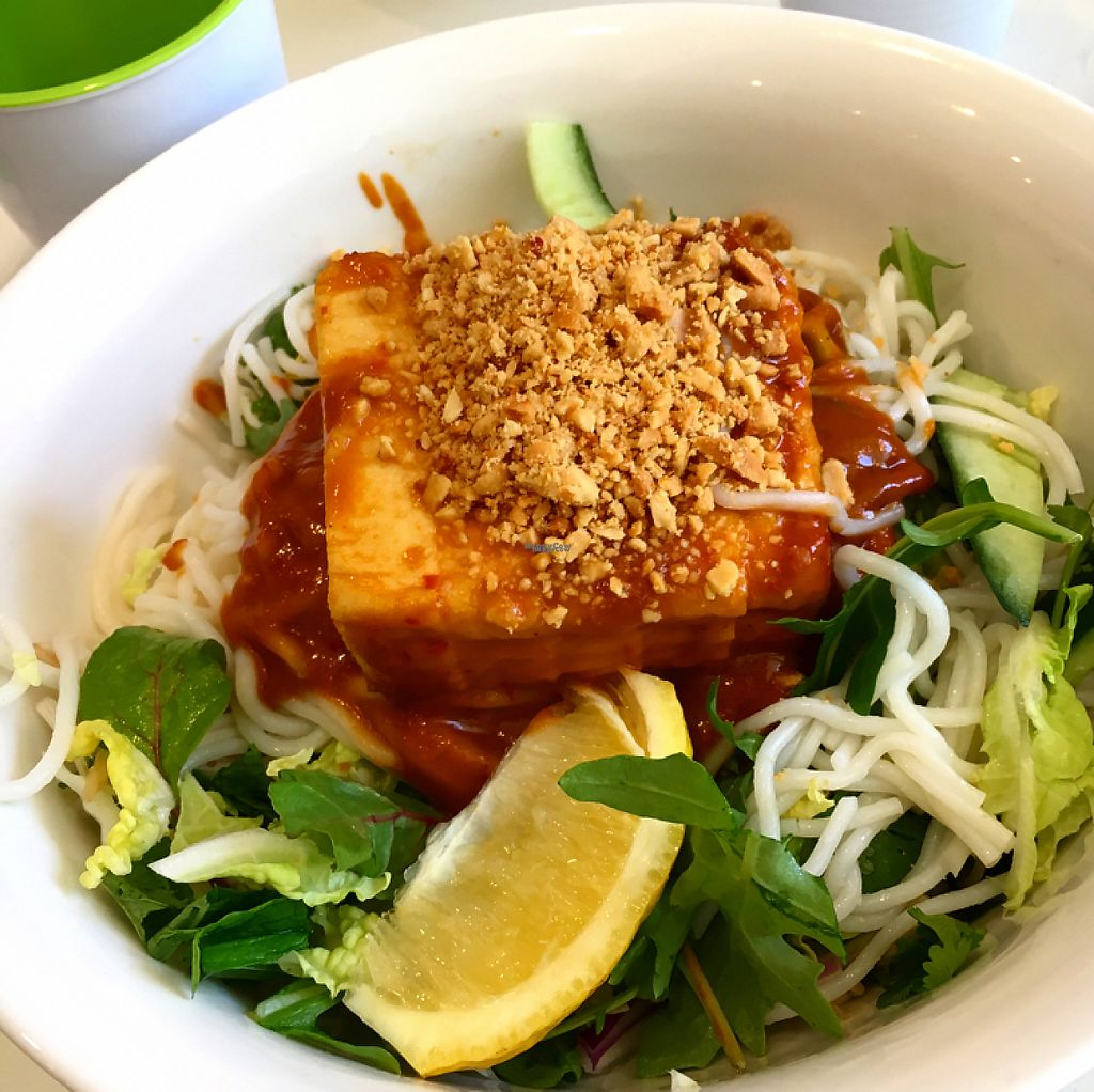 """Photo of Banana Blossom  by <a href=""""/members/profile/SeitanSeitanSeitan"""">SeitanSeitanSeitan</a> <br/>Chilli tofu noodle salad <br/> November 27, 2016  - <a href='/contact/abuse/image/73059/195036'>Report</a>"""