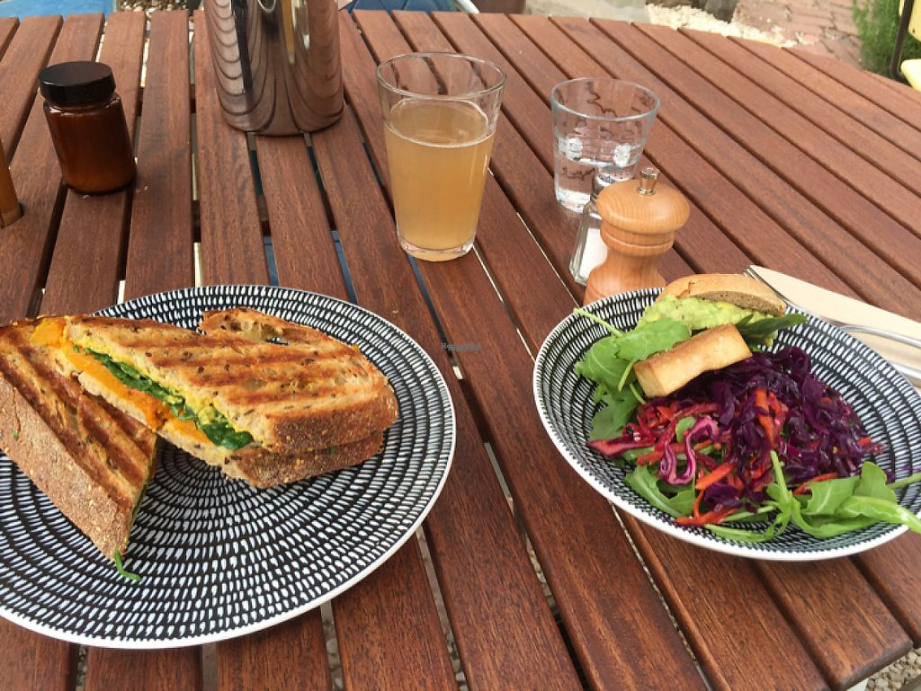 "Photo of Hamster  by <a href=""/members/profile/Dawson1303"">Dawson1303</a> <br/>hummas, pumpkin & spinach toastie, mini tofu burger with ginger & lemongrass fiz.  <br/> February 1, 2017  - <a href='/contact/abuse/image/73082/220465'>Report</a>"