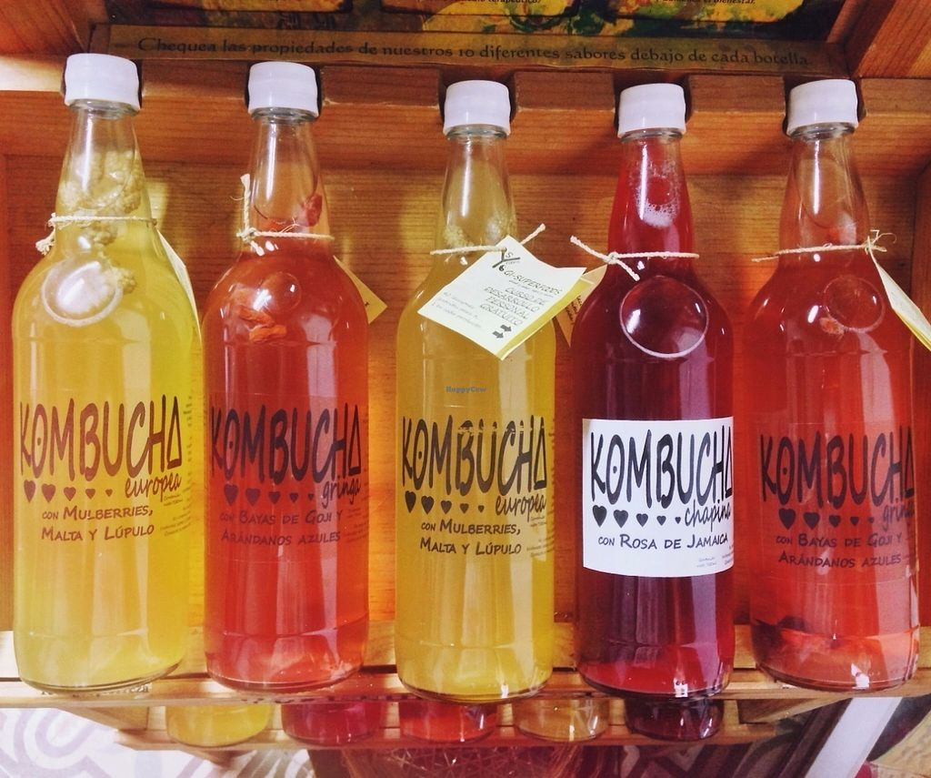 """Photo of La Casa de Cervantes  by <a href=""""/members/profile/Olenka"""">Olenka</a> <br/>Locally-made kombucha for sale in our restaurant and fair trade store! <br/> July 12, 2016  - <a href='/contact/abuse/image/73229/159479'>Report</a>"""