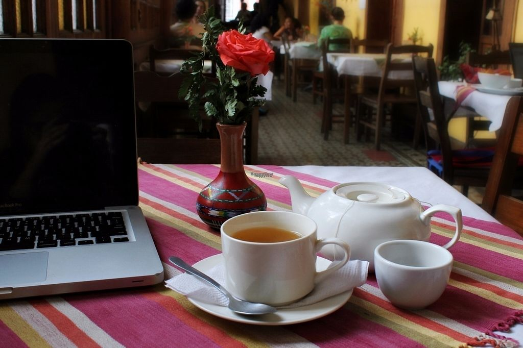 """Photo of La Casa de Cervantes  by <a href=""""/members/profile/Olenka"""">Olenka</a> <br/>Cozy place to work on your laptop while sipping on a fair trade coffee and listening to great music! <br/> August 8, 2016  - <a href='/contact/abuse/image/73229/167013'>Report</a>"""