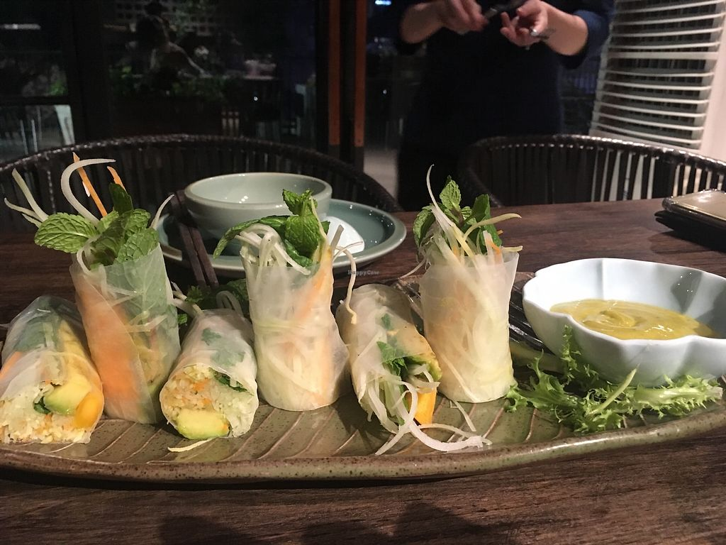"""Photo of Uu Dam Chay  by <a href=""""/members/profile/Veganville"""">Veganville</a> <br/>Avocado and mango rice rolls.  <br/> March 7, 2018  - <a href='/contact/abuse/image/73265/367806'>Report</a>"""